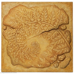 Hawaiian Fern Fragment by Georg James & John Dinsmore