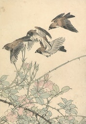 Birds and Roses by Imao Keinen